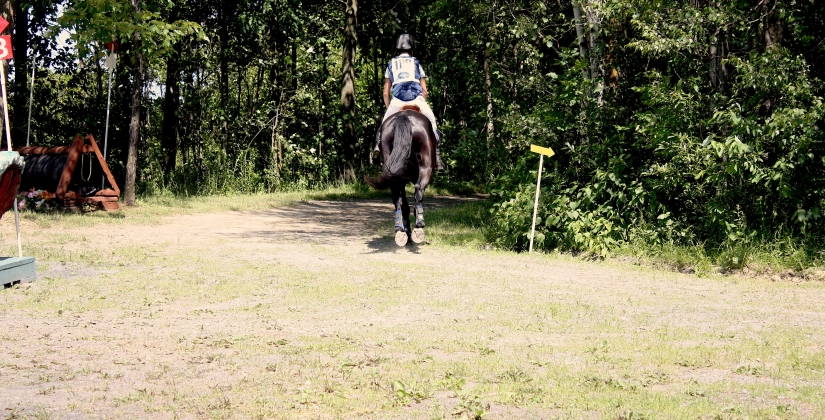Lower Back Pain and riding… am I making myselfworse?